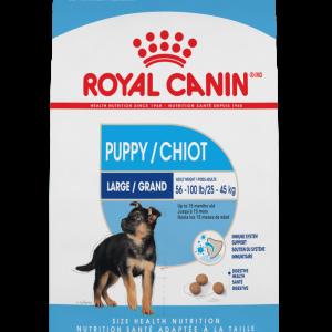 la nourriture sèche pour chiot Royal Canin Formule Chiot Maxi