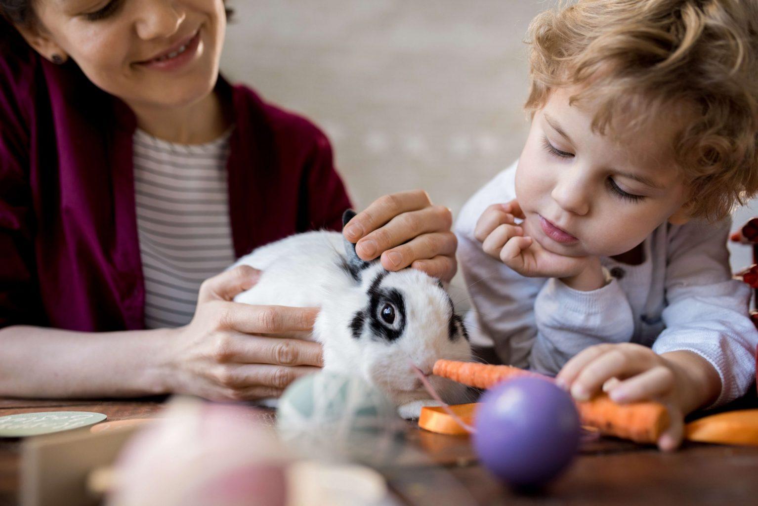Le garçon et sa mère nourrissent leur lapin d'une carotte, un légume important pour cet animal