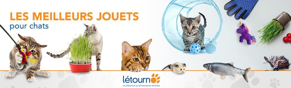 LES MEILLEURS JOUETS pour chats chez Létourno